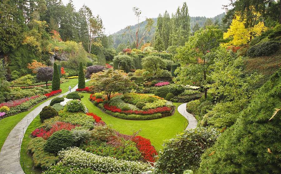 beautiful view of the Butchart Gardens