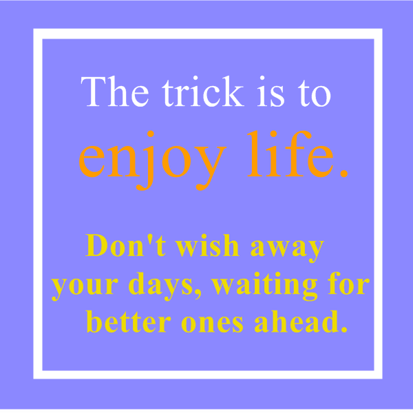 the trick is to enjoy life today