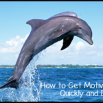 How to Get Motivated, Quickly and Easily