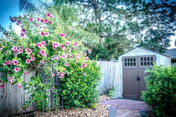 Extend the Value, Use and Appearance of Your Garden Shed