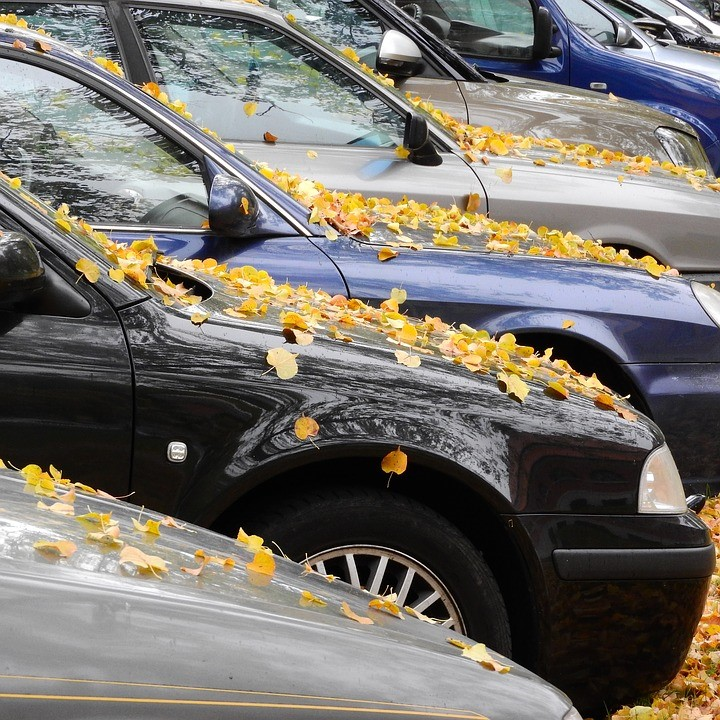 saving money buying a new car