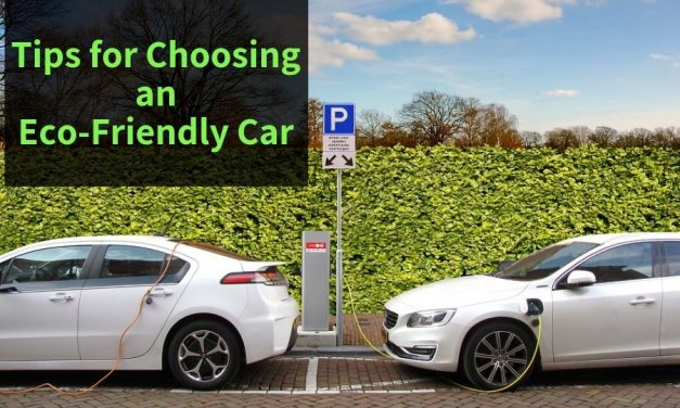 Tips for Choosing an Eco-Friendly Car
